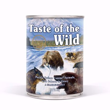 Imagem de TASTE OF THE WILD |  Pacific Stream Salmão 390 g