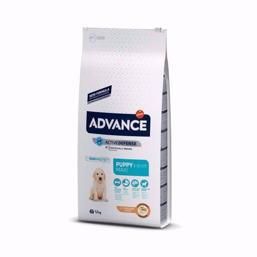 Imagem de ADVANCE Dog | Puppy Maxi Chicken & Rice