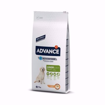 Imagem de ADVANCE Dog | Maxi Junior Chicken & Rice 14 kg