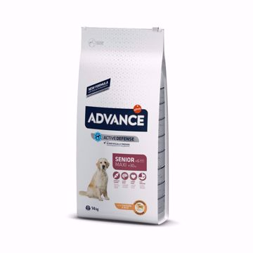 Imagem de ADVANCE Dog | Maxi Senior Chicken & Rice 14 kg