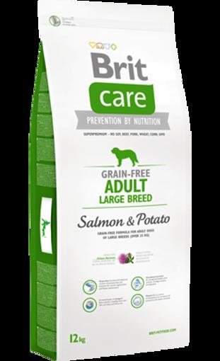 Brit Care Grain-free Dog Adult Large Breed | Salmon & Potato