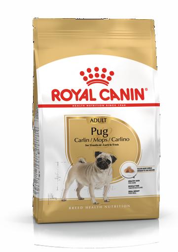Imagem de ROYAL CANIN   Dog Pug Adult