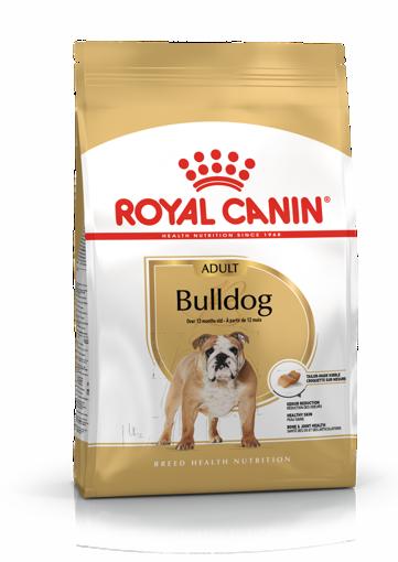 Imagem de ROYAL CANIN | Dog Bulldog Adult 12 kg