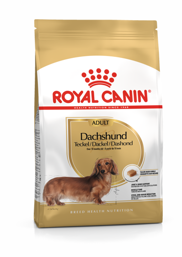 Imagem de ROYAL CANIN | Dog Dachshund Adult