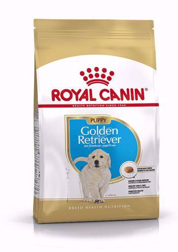 Imagem de ROYAL CANIN | Dog Golden Retriever Puppy 12 kg
