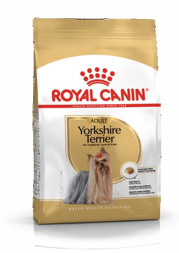 Imagem de ROYAL CANIN | Dog Yorkshire Terrier Adult