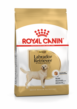 Imagem de ROYAL CANIN | Dog Labrador Retriever Adult