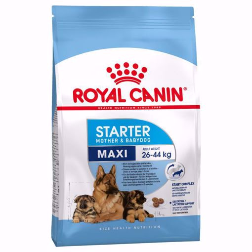 Imagem de ROYAL CANIN | Dog Maxi Starter
