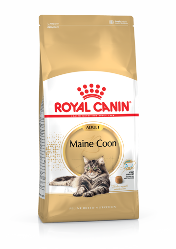 Imagem de ROYAL CANIN | Cat Main Coon Adult