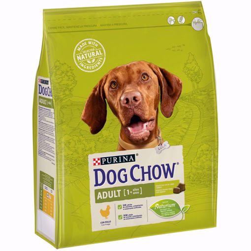 Imagem de DOG CHOW | Adult Frango