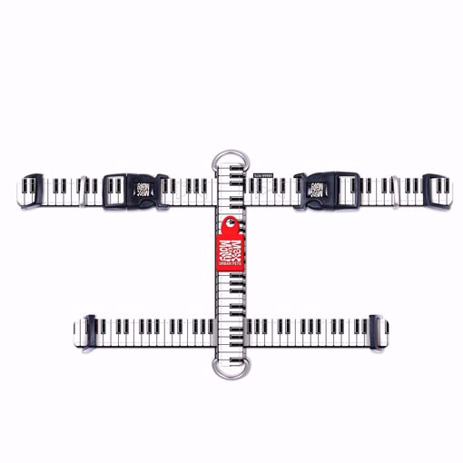 Imagem de MAX & MOLLY | Peitoral Piano
