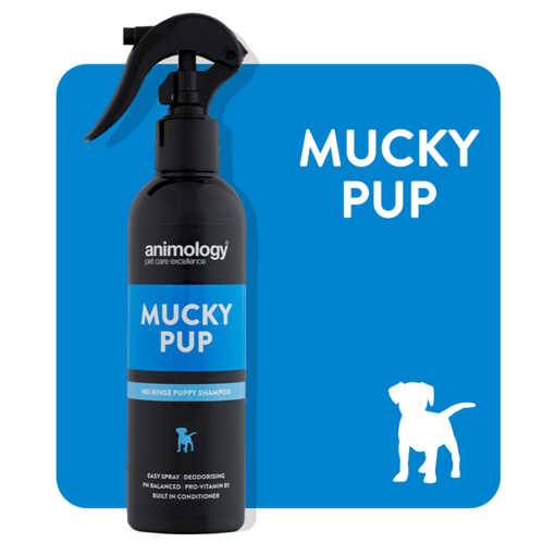 Imagem de ANIMOLOGY Dog | Spray para Cachorro Mucky Pup 250 ml