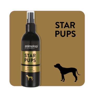 Imagem de ANIMOLOGY Dog | Perfume Spray para Cachorro Star Pups 150 ml