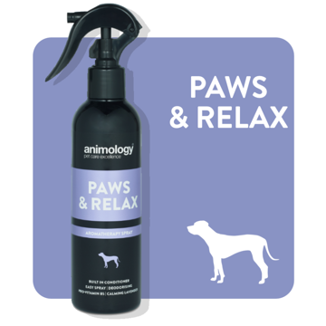 Imagem de ANIMOLOGY Dog | Spray Calmante Paws n Relax 250 ml