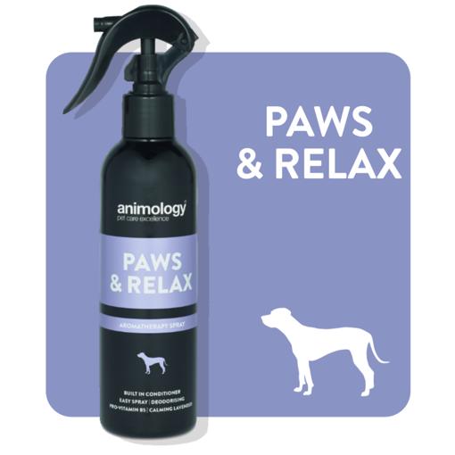 Imagem de ANIMOLOGY Dog | Spray Calmante Paws n Relax 250 ml