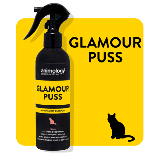 Imagem de ANIMOLOGY Cat | Shampoo Seco Glamour Puss 250 ml