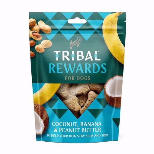 Imagem de TRIBAL | Biscoitos Côco, Banana e Manteiga de Amendoim para Cão
