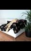 Imagem de TRIXIE | Cobertor Barney Blanket