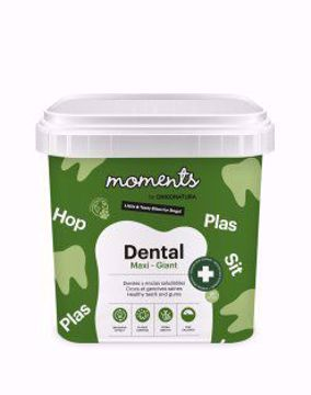 Imagem de MOMENTS   Dental Maxi - Giant Dog 500 g