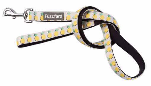 Imagem de FUZZYARD | Neoprene Lead Piña Colada