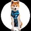 Imagem de SUITICAL Dog | Recovery Suit® - Fato de Recuperação pós Cirurgico |  Blue Camo